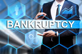 Who Files for Bankruptcy?